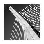 The Zakim Bridge, a distinctive Boston icon.